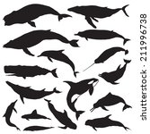 whale silhouettes. vector   Shutterstock .eps vector #211996738
