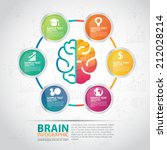 infographics vector brain design | Shutterstock .eps vector #212028214