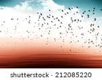 birds flying and abstract sky ... | Shutterstock . vector #212085220