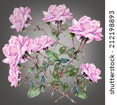 Pink Roses On A Gray Backgroun...