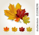 set of colorful autumn leaves... | Shutterstock .eps vector #212208298