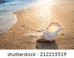 Big Seashell On The Sand On The ...