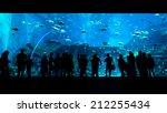 Bigest Aquarium With...