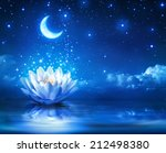 Waterlily And Moon In Starry...