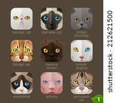 animal faces for app icons cats ... | Shutterstock .eps vector #212621500
