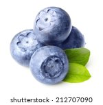 forest wild berry blueberry... | Shutterstock . vector #212707090