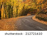 Road In Autumn Forest. Autumn...