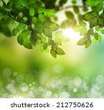 spring or summer season... | Shutterstock . vector #212750626