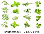 parsley herb  basil leaves ... | Shutterstock . vector #212771446