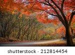 Постер, плакат: Autumn color in Naejangsan