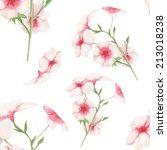 watercolor handmade decorative... | Shutterstock . vector #213018238