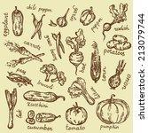 hand  drawn set  vegetables  | Shutterstock .eps vector #213079744