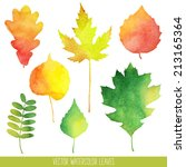 vector watercolor autumn leaves | Shutterstock .eps vector #213165364