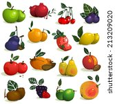 fruits and berries collection.... | Shutterstock .eps vector #213209020