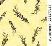 hand drawn fresh rosemary... | Shutterstock . vector #213277189