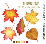 autumn leaves a watercolor on a ... | Shutterstock .eps vector #213419110