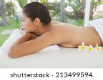beautiful brunette relaxing on...   Shutterstock . vector #213499594