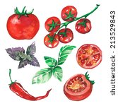 vegetables set drawn watercolor ... | Shutterstock .eps vector #213529843