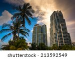 Palm Trees And Highrises At...