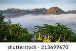 bromo volcano at sunrise... | Shutterstock . vector #213699670