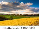 evening view of farm fields and ... | Shutterstock . vector #213915058