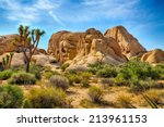 Boulders And Joshua Trees In...