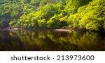 Trees Along The Lehigh River A...