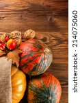 agriculture harvested products... | Shutterstock . vector #214075060