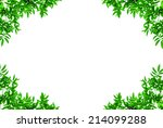 green leaves frame isolated on... | Shutterstock . vector #214099288