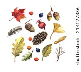 set of vector in autumn style.... | Shutterstock .eps vector #214127386
