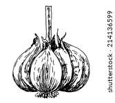 engraving illustration of...   Shutterstock .eps vector #214136599