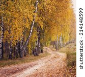 Autumn Forest Road Between...