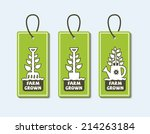 set of vector labels with a... | Shutterstock .eps vector #214263184