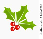 Holly Berry Icon  Christmas...