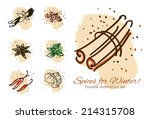 spices for winter doodle... | Shutterstock .eps vector #214315708