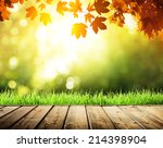 Wooden Surface And Autumn Forest