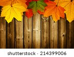 wooden background with autumn... | Shutterstock . vector #214399006