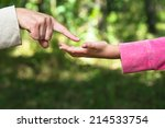 finger points to the palm | Shutterstock . vector #214533754