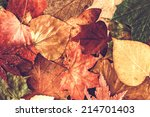 Small photo of Autumn leaves background.