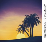 tropical summer landscape with... | Shutterstock . vector #214765069