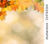 abstract autumnal backgrounds... | Shutterstock . vector #214765264