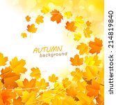 natural background with leaves ... | Shutterstock .eps vector #214819840