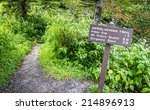 the appalachian trail. the... | Shutterstock . vector #214896913