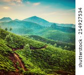 tea plantations in state kerala ... | Shutterstock . vector #214927534