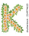 alphabet k created from... | Shutterstock . vector #214974610