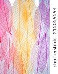 autumn colors transparent | Shutterstock . vector #215059594