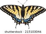 Butterfly Clip Art   Species ...