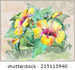 greeting card with hibiscus.... | Shutterstock .eps vector #215115940