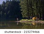 multi generational family on... | Shutterstock . vector #215274466