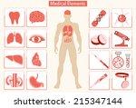 medical info graphics. human... | Shutterstock .eps vector #215347144